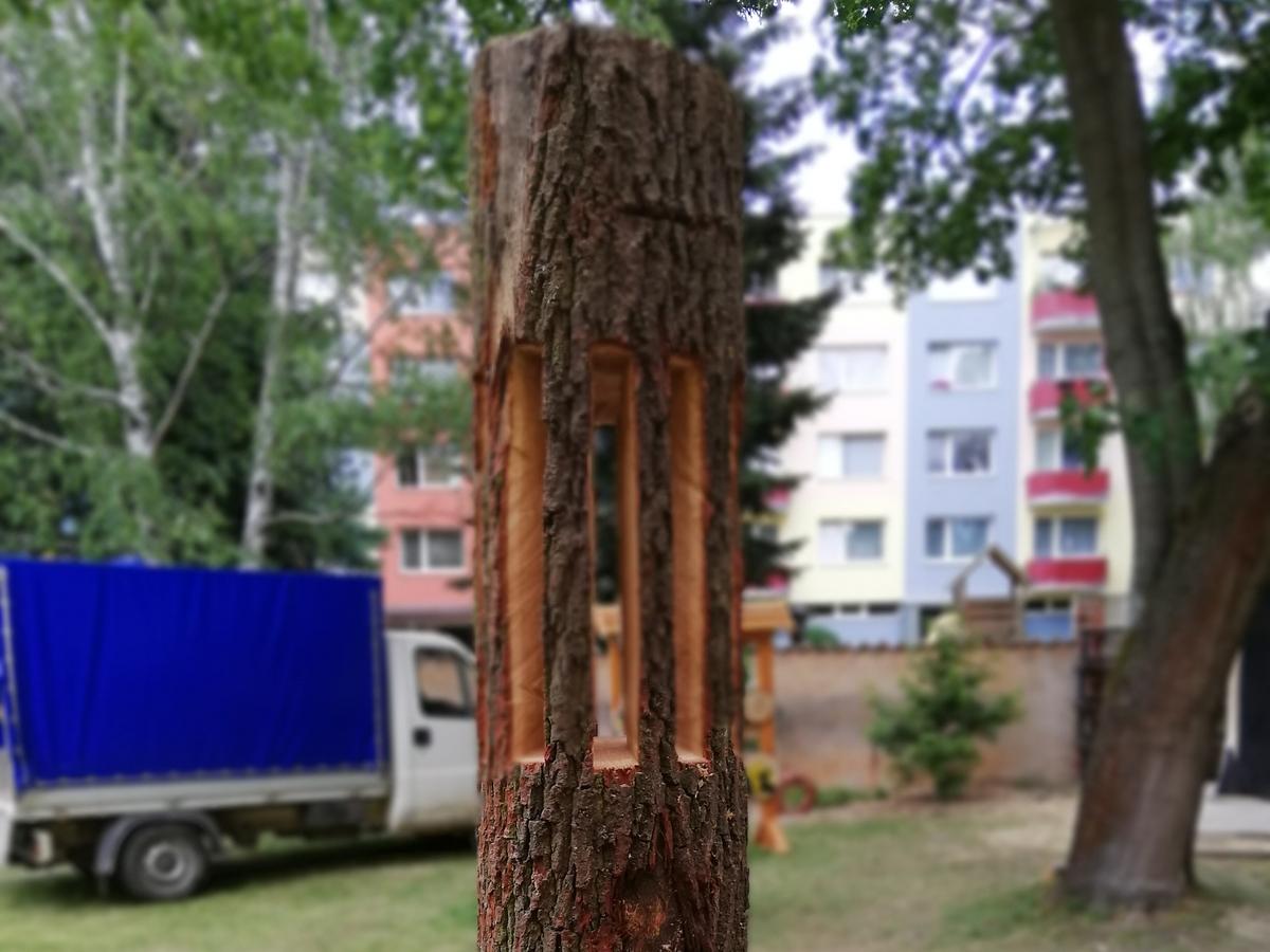 Korbinian_KÄFIG
